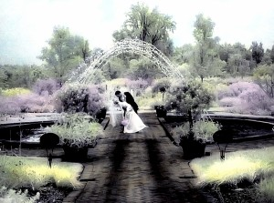 hand-colored infrared fountain